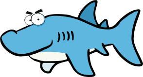 Shark Pic